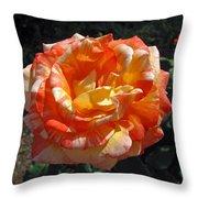Hybrid Tea Rose Throw Pillow