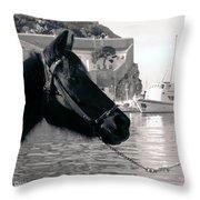 Hydra Horse Throw Pillow