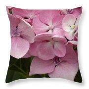 Hydrangea Throw Pillow