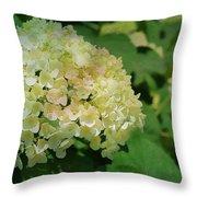 Hydrangea In Soft Light Throw Pillow