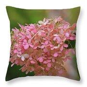 Hydrangea Valentine Throw Pillow