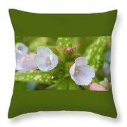 Hydrangeas 2 Throw Pillow