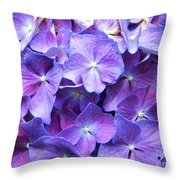 Hydrangeas  Throw Pillow