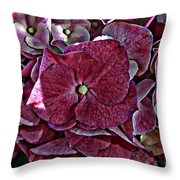 Hydrangeas In Rich Rose Color Throw Pillow