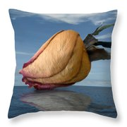 Hydrated Throw Pillow