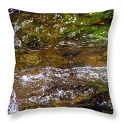 Hydrotherapy Throw Pillow