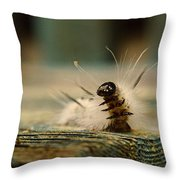I Am A Caterpillar Throw Pillow