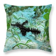 I Am A Hairy Ghost Pipe Fish Throw Pillow