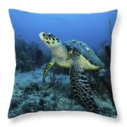 I Am A Proud Hawksbill Turtle Throw Pillow