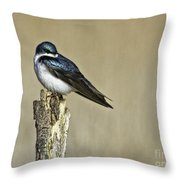 I Am Gorgeous Throw Pillow