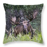 I Am Hidden Throw Pillow
