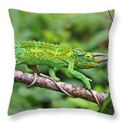 I Am Not A Pickle Throw Pillow
