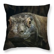 I Am Ready For My Close-up Throw Pillow