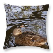 I Am Surrounded Throw Pillow