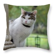 I Am Waiting You At Our Place Throw Pillow