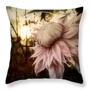 I Bloom Only For You She Whispered Throw Pillow