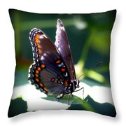 I Butterfly Throw Pillow
