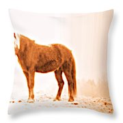 I Came Out Of Nothing To Meet You Here In Nomansland  Throw Pillow