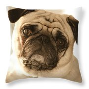 I Can Be Your Lovebug Throw Pillow by Trish Tritz