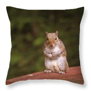 I Can Feel It Right Here Throw Pillow