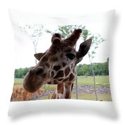 What's That You Say? Throw Pillow