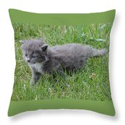 I Can Make It Throw Pillow