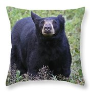 I Can Smell You Throw Pillow