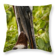 I Can Still See You Throw Pillow