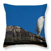 I Cry Fowl Throw Pillow
