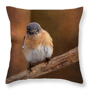 I Don't Think So Throw Pillow