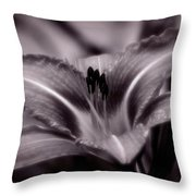 I Dream Of You Throw Pillow