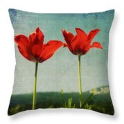 I Go To The Hills When My Heart Is Lonely Throw Pillow