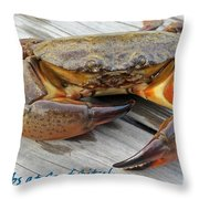 I Got Crabs At Surf City Throw Pillow