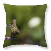 I Got It Throw Pillow by Mike Herdering