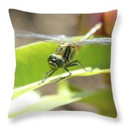 I Got You 2 Throw Pillow
