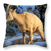 I Had To Go Throw Pillow