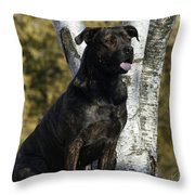 I Have Been Such A Good Dog Throw Pillow