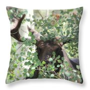 I Have Eyes For You Throw Pillow