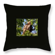 I Have My Eye On You Throw Pillow