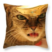 I Just Want A Drink Throw Pillow