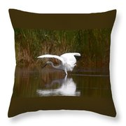 I Look Pretty Throw Pillow