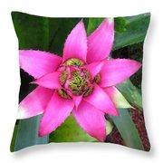 Pink And Beautiful  Throw Pillow
