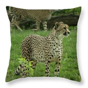 I See Dinner Throw Pillow