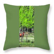 I See You 6172 Throw Pillow