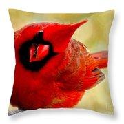 I See You Too Throw Pillow