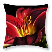 I Shadow Your Beauty Throw Pillow by Camille Lopez