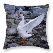 I Sing Your Praise Throw Pillow