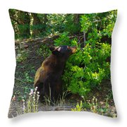 I Smell Something Good In There  Throw Pillow