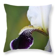 I Spy An Iris Throw Pillow