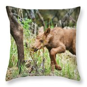 I Think I Can Throw Pillow